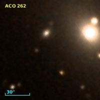 ACO   262