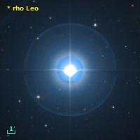 V* rho Leo
