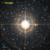 V* V2391 Oph
