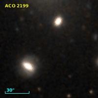 ACO  2199