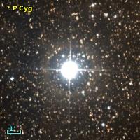 NOVA Cyg 1600