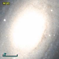 M  81