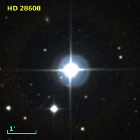 HD  28608